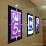 L'abitudine ha stampato l'alta qualità Lightbox Backlit visualizzazione di pubblicità dell'interno