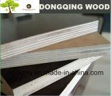 la película de 15m m hizo frente a la madera contrachapada con el material fenólico de la madera dura del pegamento