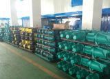 Wedo Jst-80 selbstansaugende Pumpe mit Edelstahl-Pumpen-Kopf 0.55kw/0.75HP