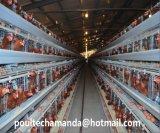un tipo nuove gabbie automatiche del pollo di strato dell'azienda avicola da vendere