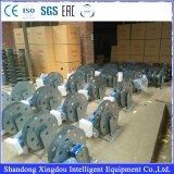 플래트홈 중국 중단한 공급자 및 중국이 Zlp630 강철에 의하여 직류 전기를 통했다