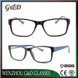 Het nieuwe Cp Eyewear van het Ontwerp Frame Ms289s van de Glazen van het Oogglas Optische