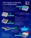 OIML anerkannter LCD Anzeiger für Plattform-Schuppe (AWF) wiegend