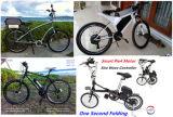プログラム可能なGoldenmotor! 新しいバージョン! スマートなパイ5! 電気自転車キット/Eのバイクキット/電気変換キットのハブモーター24V/36V/48V 200-400W