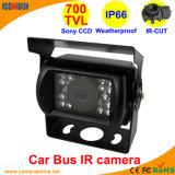 비바람에 견디는 소니 800tvl IR Vehicle Car Bus Camera