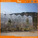 Vegetable Planting를 위한 Use 광대한 다중 Span PC Greenhouse
