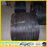 Collegare temprato nero del ferro dei 14 calibri/collegare nero (fornitore)
