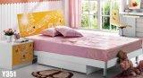 Children Furniture (Y351)