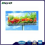 PVC Flex Frontlit Banner X-bannière Billboard (500dx500d 9X9 440g)