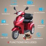 E-Roller, E-Fahrrad, elektrischer Mobilitäts-Roller, untauglicher Roller, elektrisches Fahrrad/Fahrrad