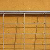 販売のための頑丈な電流を通された金属の農場のゲート