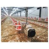 Automatischer Umgebungskontrollen-Typ Huhn-Haus mit Geflügel-Geräten