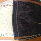 Соединенных Штатов Бразилии волосы рыб линии Halo (PPG-l-0972)