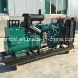 150kw/187kVA 1500tr/min 220V trois phase Ricardo Groupe électrogène Diesel R6110zld