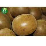Luo Han Guo извлечения 80% 25% Mogroside Mogrosides V