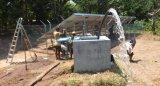 Zhejiang Cheers 3 ano de garantia Solar de poços do sistema de bombeamento de água para a agricultura
