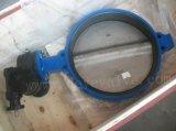 Linha da Válvula Borboleta Com Flanges Duplo Concêntricos com banco de EPDM