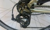 Samsung-Lithium-Batterie-elektrisches Fahrrad mit MITTLEREM Motor (FR-TDB15)