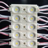 Los 2 LED al aire libre DC12V con el disipador de calor estupendo SMD2835 impermeabilizan los módulos del LED para las luces/las cartas de canal/Lightbox de la muestra del LED