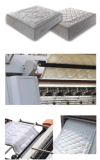 De matras automatiseerde Shuttleless Multifunctionele TextielMachine (hy-w-DGN)