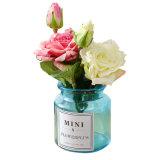 Стеклянный цветок ваза гидропоники для украшения