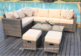 Il sofà esterno del patio imposta la mobilia del rattan del giardino