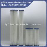 10 de Patroon van de Filter van het Zwembad van de Polyester van de duim met 5 Micron