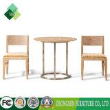 居間のための現代簡単な様式の木表そして椅子