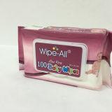 Aloe Vera Baby Skin Care Cleaning Wet Tissue, Moist Wet Wipe