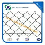 Galvanzied 체인 연결 담 PVC 입히는 체인 연결 담 (최신 판매 & 공장 가격)