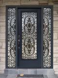 エントリ熱い販売の金属の錬鉄のドア