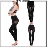 Fábrica OEM Perneiras Fitness diferentes tipos de desportos calças de ioga de desgaste com orifícios