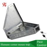 Ловушка мыши угла металла ловушки крысы служба борьбы с грызунами и паразитами гуманная с твердой крышкой