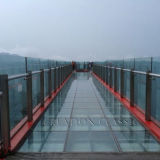 يليّن زجاج مع [هيغقوليتي] يجعل في الصين