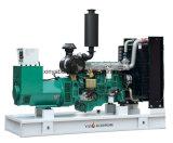 Раскройте тип генератор дизеля 300kw Shangchai