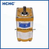 2018 Haut de la qualité de la pompe hydraulique à engrenages double Cbwlfk pour la vente