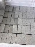 Gevlamd/Geslepen/Struik Hsmered/de Natuurlijke Gespleten Kubussen/de Randen van Straatstenen G654/G603/G682/G687 voor Stoep/Zijdelings/Pavment