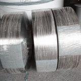 304 tiras del acero inoxidable para la aplicación industrial