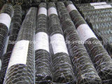 High Carbon Steel Wire Woven Wire Screen Black Wire Mesh