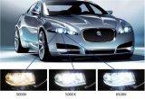 Automobiel LEIDENE van de Verlichting van de Aanhangwagen rv van de Vrachtwagen van het Huishouden Gloeilampen die Stemmende Uitrusting van de Verbetering van de Vervanging van de Bollen van de Gloeilampen van Lichten & van de Toebehoren van de Auto de Automobiel drijven