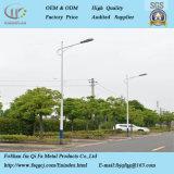 Luz de rua em aço inoxidável profissional Pole com Braço Duplo/Individual