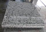 Carrelages blancs blancs de matériau de construction de pierre de tuile de granit de Bala