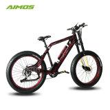 48 В 1000W жир шины электрический велосипед с подвеской вилочного захвата