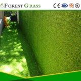 Césped Artificial de alta calidad en el patio (CS)