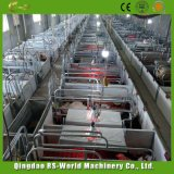 Клеть свиньи Китая порося с HDG