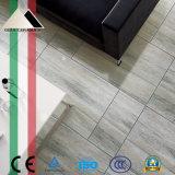 """24 nuove mattonelle di marmo del pavimento e della parete della porcellana di disegno """" *24 """" con Lappato (GRH6601R)"""