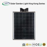 20Wリモート・コントロールの統合された太陽庭ライト(Kong Series王)