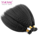 Do Weave reto Kinky do cabelo da classe 5A cabelo humano brasileiro Yaki do vendedor superior