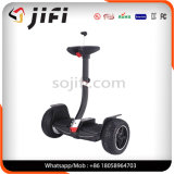 Bluetooth를 가진 2개의 바퀴 지능적인 균형 전기 스쿠터 전기 Hoverboard