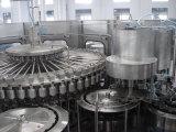최신 채우는 생산 라인 작은 주스 생산 기계 주스 병 채우게